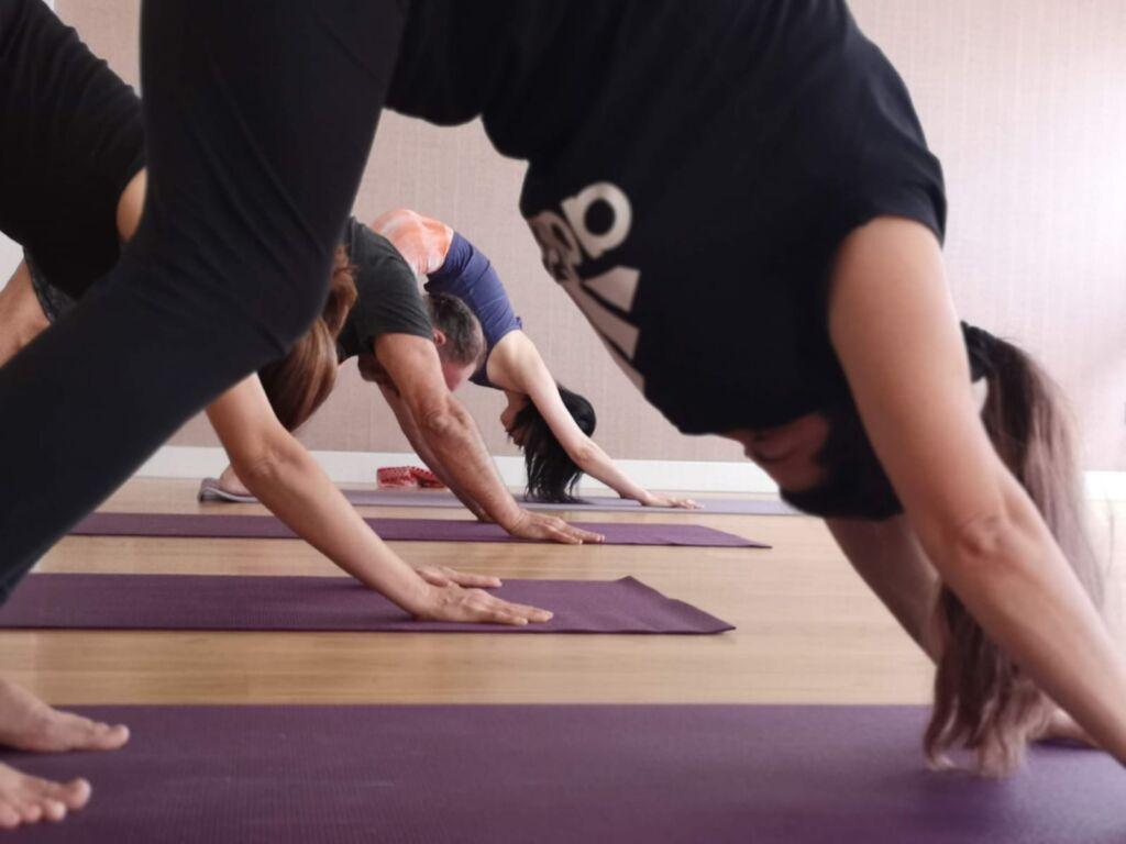 Odaka Yoga - Practice here